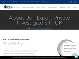 Best Private Investigator London