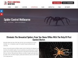 Spider Control Treatment & Removal in Melbourne at low cost – Pest Control Doctor