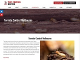 Termite Treatment, Termite Control in Melbourne – Pest Control Doctor