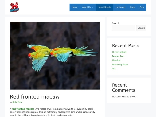 Who Is Red Fronted Macaw In Details