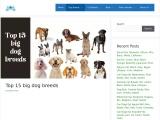 Top 15 Big Dog Breeds In Details