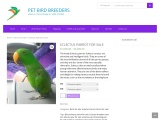 Lovely Parrots and birds for sale