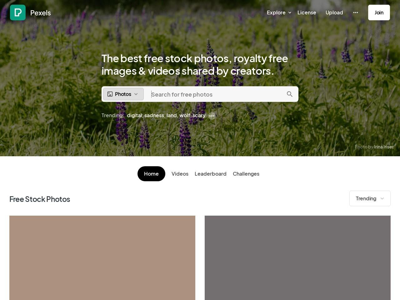 Christmas Pics Images