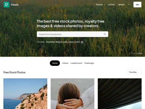 Pexels - 15 Free Website for Quality Free Copyright Images 2020