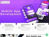 Best Dot Net Development services provider –Pixel Values Technolabs