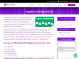 Why Your Business Should Be Using Digital Marketing Services   Visit Pixel Values Technolabs