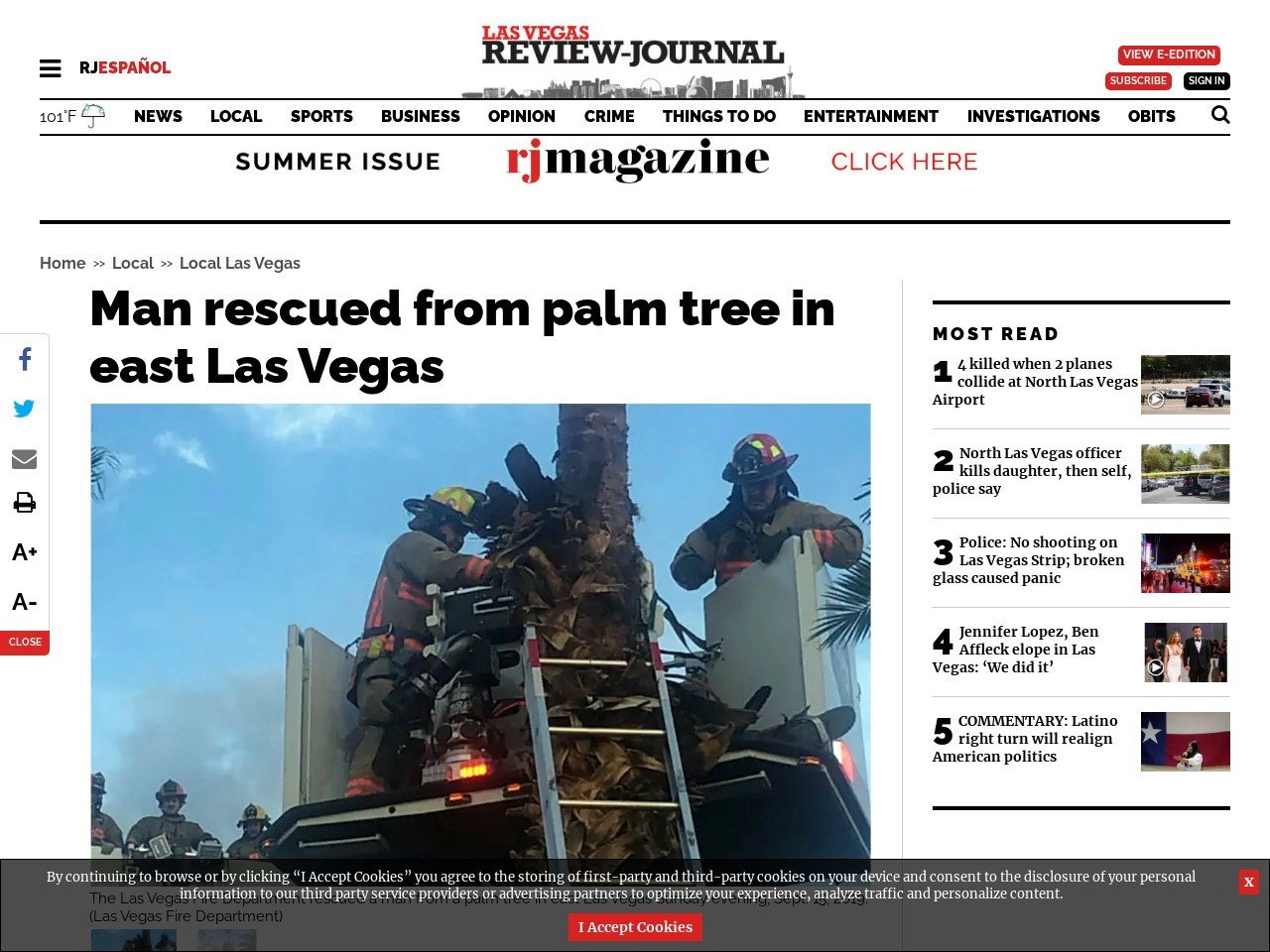 Man rescued from palm tree in east Las Vegas