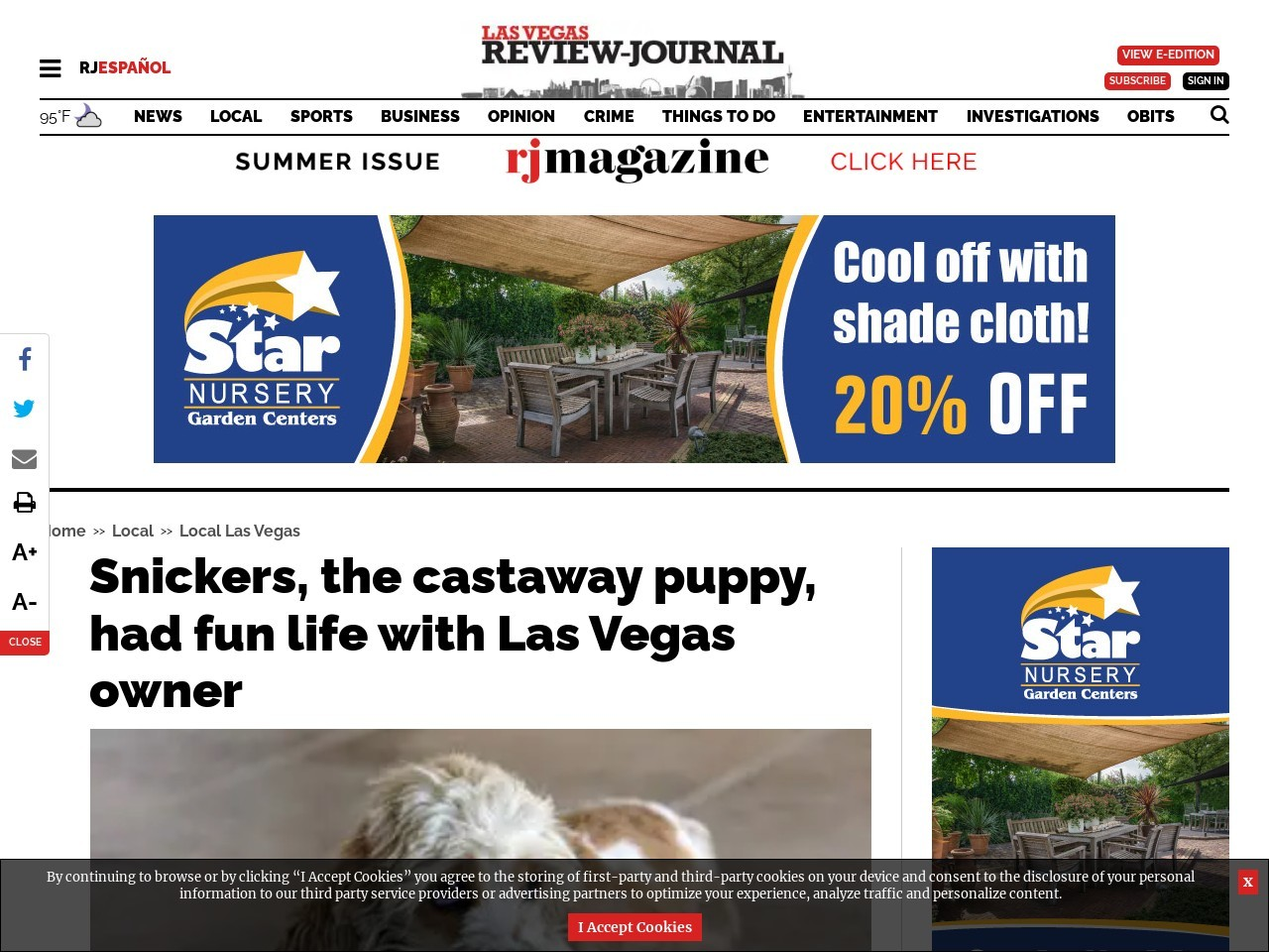 Snickers, the castaway puppy, had fun life with Las Vegas owner