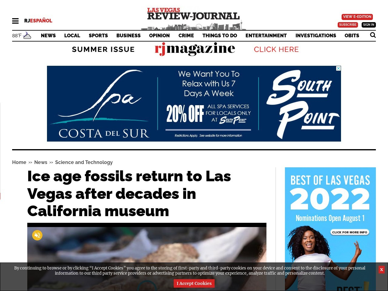 Ice age fossils return to Las Vegas after decades in California museum