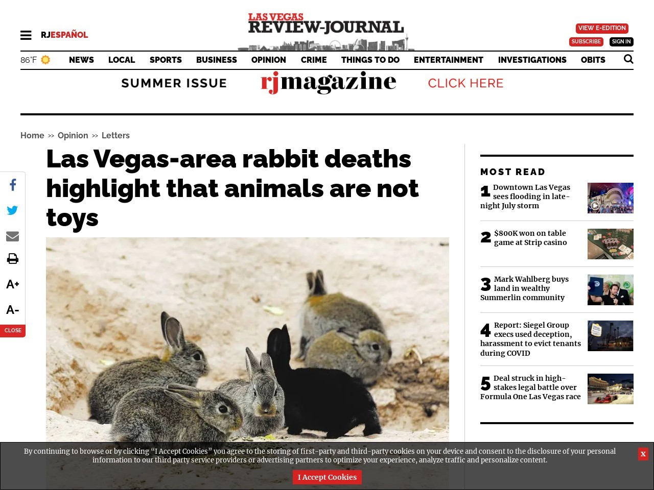 Las Vegas-area rabbit deaths highlight that animals are not toys