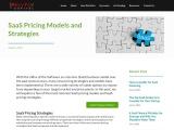 SaaS Pricing Models and Strategies | RevTek Capital