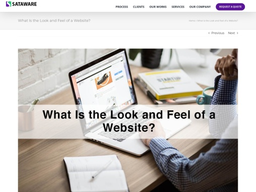 What Is the Look and Feel of a Website?
