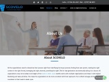 Key Account Management Training | Key Account Consultant – ScoVelo Consulting