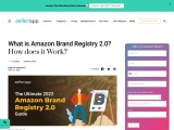 What is Amazon Brand Registry 2.0? Ultimate 2020 Guide