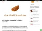 All Information About One Mukhi Rudraksha