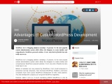Advantages of Custom WordPress Development