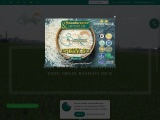 Basmati Rice Manufacturers and Exporters in India