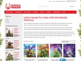 Indica Seeds For Sale with Worldwide Delivery