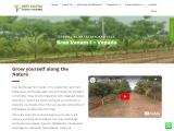 Sandalwood Agri Farms Lands Sale in Vepada, Vizianagaram
