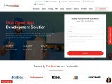 The Idea of Using Clone Software to Start a Cab Company-