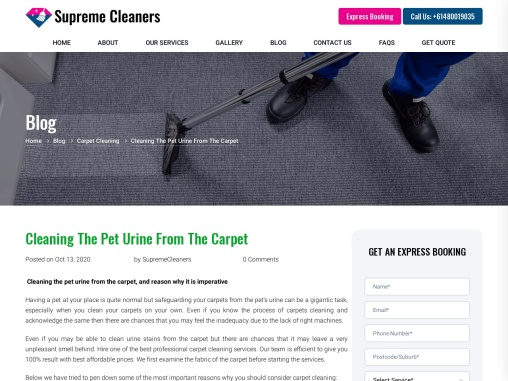 Cleaning The Pet Urine From The Carpet