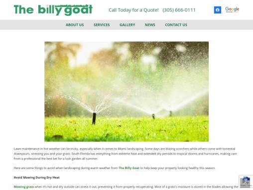 Things to Avoid When Landscaping in Hot Weather