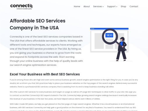 Affordable SEO Services in USA for Small Businesses- Connectiq