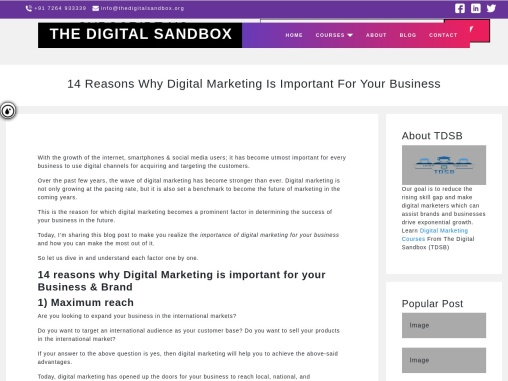 14 Reasons Why Digital Marketing Is Important For Your Business