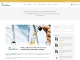 What is CBD oil and How Do You Use It: Everything from Benefits to Dosage – The Farmacist
