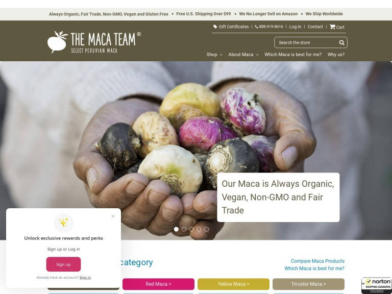 The Maca Team screenshot