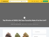 Top Strains of 2022: Did Your Favorite Make it to the List?