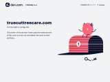 Affordable Tree Planting Services – professional tree planting services