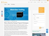 What is Black Box Testing? | Types & Techniques