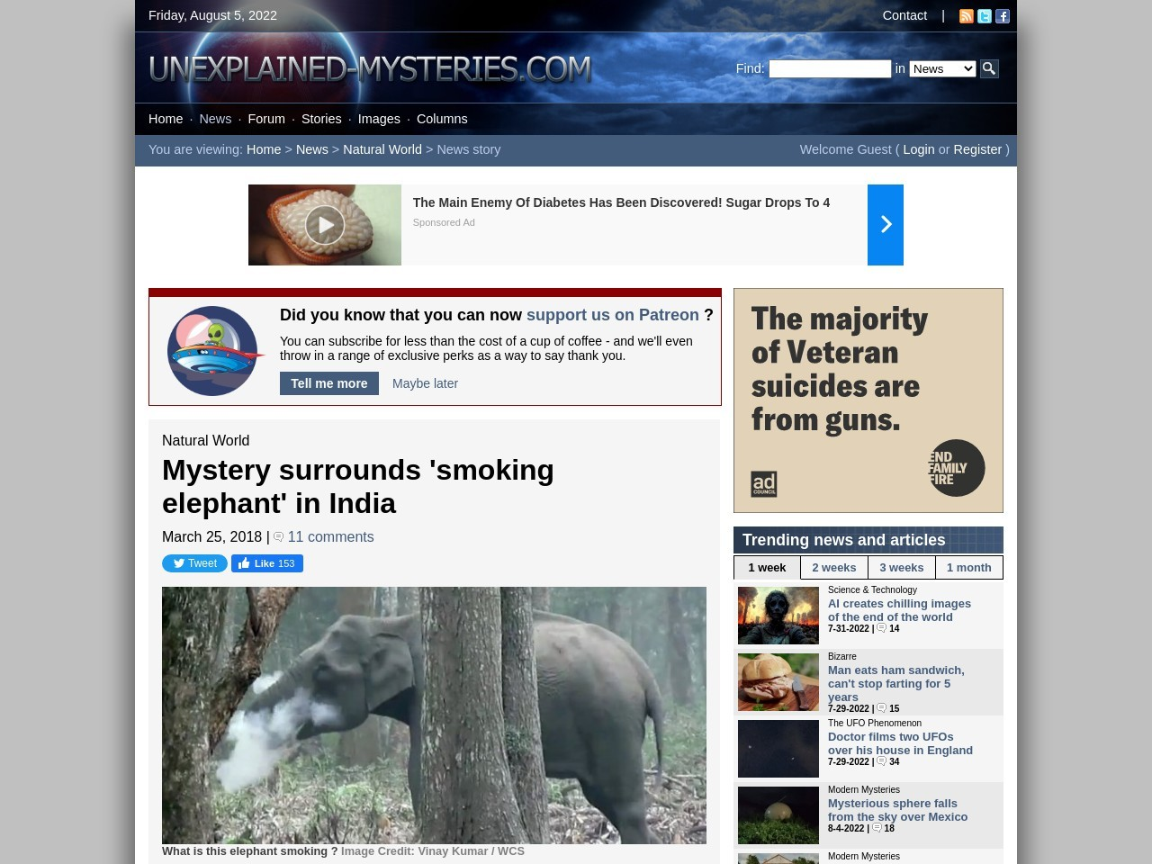 Mystery surrounds 'smoking elephant' in India