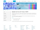 Epidermal Growth Factor (EGF) |diabetic neuropathy treatment