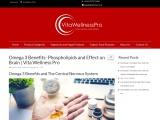 Omega 3 benefits phospholipids and effect on brain