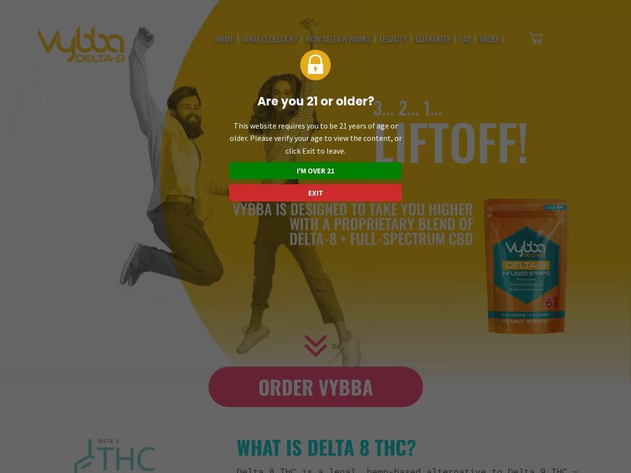 Vybba 90 Day Guarantee   Vybba.com
