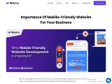 Why Mobile-Friendly Website Development is Important?