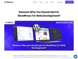 Reasons Why You Should Opt For WordPress For Web Development?