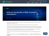 What are the Benefits of Developing B2B eCommerce Marketplace?