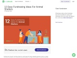 12 Easy Fundraising Ideas For Animal Shelters