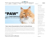 """""""Paw""""-some Characteristics of Cats You Should Know – Lynda Hamblen"""