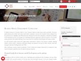 Business Model Development, Business Strategy Development Models
