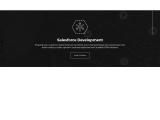 Salesforce Application Development Company