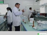 Pre Formulation Intermediates| ZIM Labs