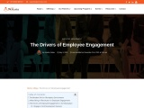 The Drivers of Employee Engagement