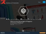 Free Website-What are the Advantages of Magento eCommerce Platform?