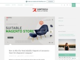 WordPress- How to Hire the Most Suitable Magento eCommerce Store Development Company?