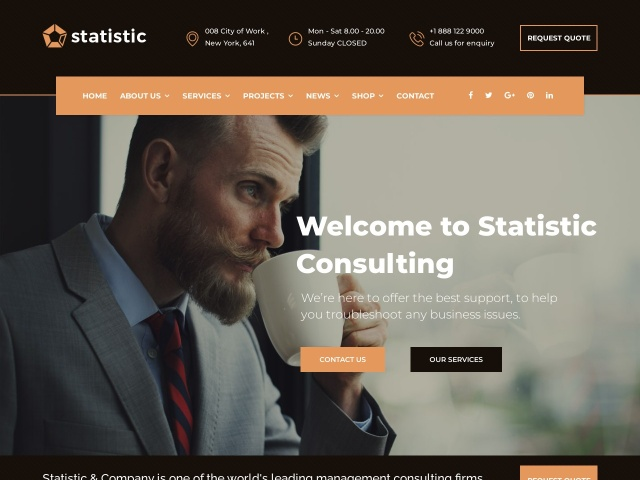 Statistic - Business Consulting and Professional Services Joomla Theme Screenshots
