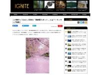 今年行ってみたい注目の「桜絶景スポット」とは?!ランキング発表!